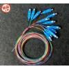 供应12芯束状尾纤 方头 SC-UPC尾纤