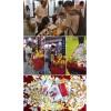 华夏家博会:惠申地暖稳居电地暖品类销售冠军