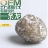 漳州辰韩食品有限公司招商