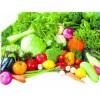 蔬菜生长翠绿好农药叶片厚实宽大不含激素无添加增产增量