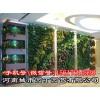 郑州围挡立体绿化、郑州护坡垂直绿化-郑州健身房绿植墙制作