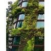夏季垂直绿化郑州健身房植物墙有哪些公司做的好制作-城市园丁