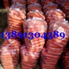 陕西大荔水洗红萝卜产地销售批发价格