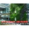 郑州护坡垂直绿化-河南郑州客厅绿植墙制作|围挡立体