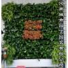 郑州别墅绿植墙——河南城市园丁园艺有限公司