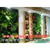 郑州别墅绿植墙制作-河南城市园丁园艺有限公司