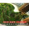 郑州别墅绿植墙制作!郑州立体绿化!垂直绿化!|挡墙立体