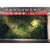 郑州阳台植物墙施工价格-河南城市园丁园艺有限公司