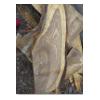 供应梧桐木香椿木苦楝木原木