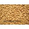 求购淀粉豆类碎米小麦大米糯米高粱玉米等原料