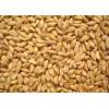 收购高粱大米碎米小麦淀粉豆类玉米高粱等原料