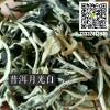 云南普洱茶 2018年春月光白茶散料 景谷大白茶 生茶 批发