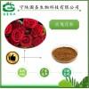 宁陕国圣 食品原料 玫瑰花提取物 SC证件
