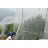 全新料果树防虫网报价志广加厚加宽优质果树防虫网