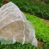 结实耐氧化果树防虫网 40目加厚新料聚乙烯脐橙防虫网