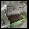 盆栽蔬菜播种机  点籽机 阳台种菜--常州风雷精机