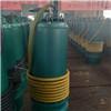 上海供应BQS高扬程防爆污水泵