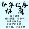 北京国际7货新华证券招商代理服务周到