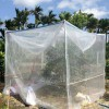 结实的耐氧化的丝网40目加宽加厚的果树防虫网直销