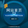 胜网网站首页开发设计