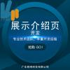胜网网站展示介绍页设计开发