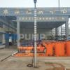 QJ潜水井泵(德能)天津