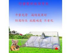 厂家直销双体仔猪保育床设备 专业生产厂家