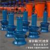 专业生产轴流泵厂家