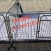 仔猪保育床 厂家批发 仔猪保育床价格