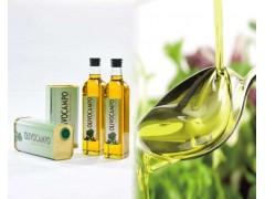 食品橄榄油进口到天津港报关海运代理公司