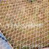 供应不锈钢绳网 不锈钢绳网供应厂家 动物园专用