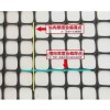 矿用塑料格栅-煤矿井下用双向拉伸塑料网假顶厂家价格