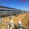牛场养殖防火卷帘布量大优价-猪场保温、耐久性卷帘定制批发