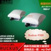 美国Ruckus优科P300网桥901-P300-WW02
