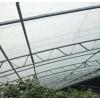 温室大棚双梁双膜骨架大棚专用设备几字钢骨架厂家zui 新价格