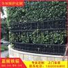 庭院护栏 铝围栏 铸铝栏杆 铸铝铝艺护栏源头工厂